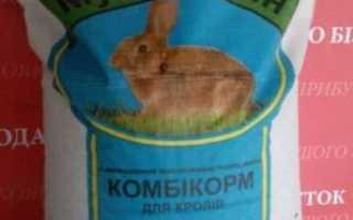 Рецепты комбикормов для кроликов в домашних условиях и суточная норма