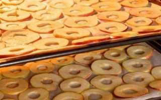 Секреты заготовок: сушеная тыква. блюда из сушеной тыквы: рецепты
