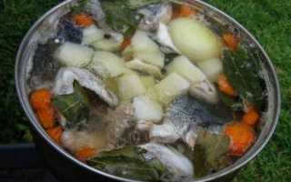 Рыбный суп из щуки