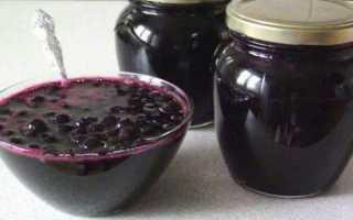 Блюда из черноплодной рябины на зиму и не только: 25 домашних вкусных рецептов