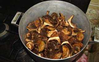 Можно ли употреблять в пищу грибы свинушки? что делать при отравлении этими грибами?