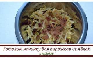 Пирожки с яблоками: духовые, жареные, дрожжевые, слоеные, на кефире