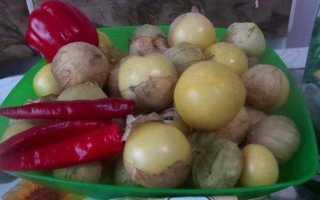Как заготовить физалис овощной на зиму. рецепты заготовок из физалиса на зиму